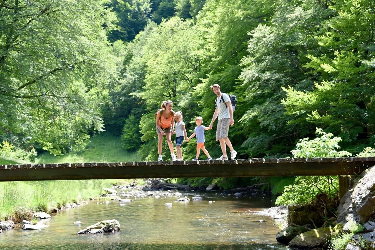 Familia en medio de un bosque. Los cuatro miembros cruzan un puente de madera por el cual pasa un río
